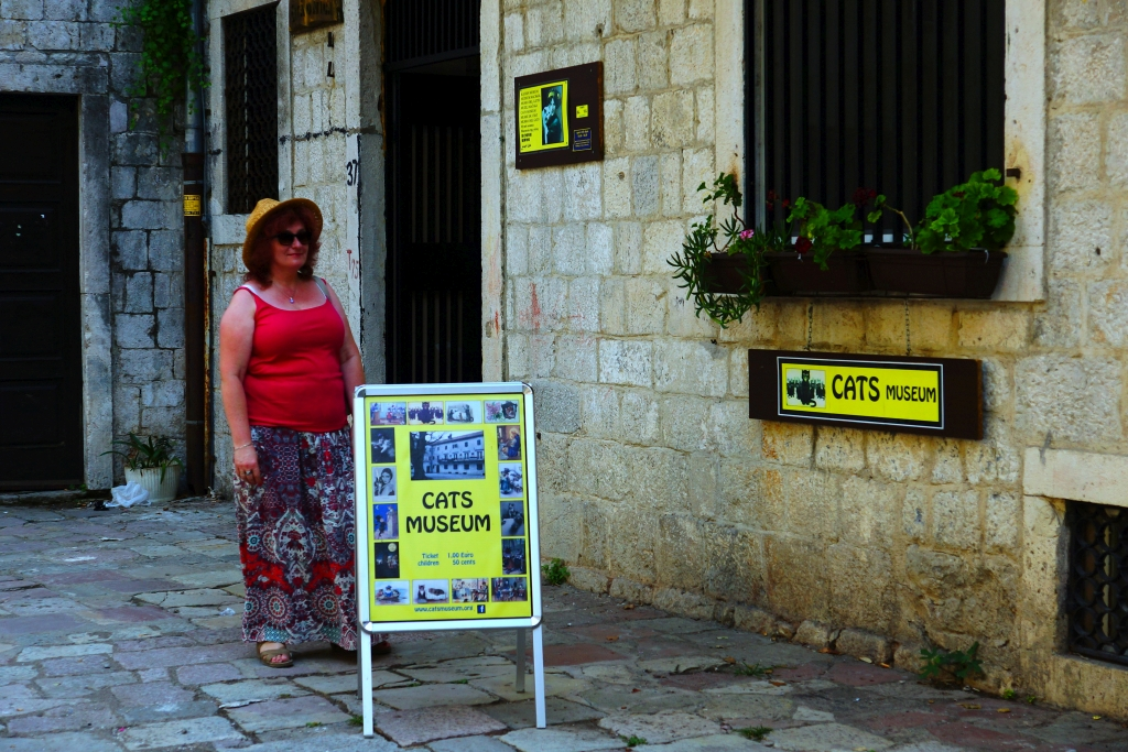 Muzeum Kotów Kotor