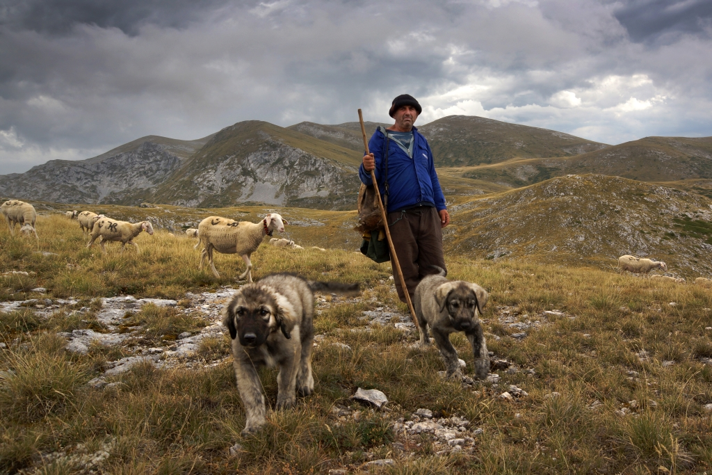 Karpatami na Bałkany