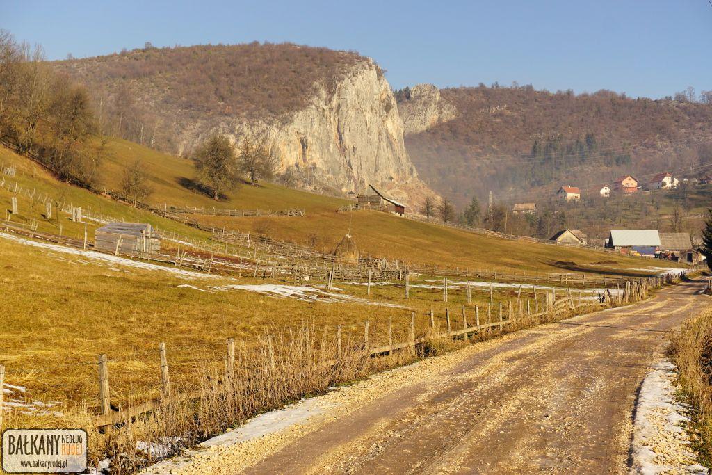 Orlovača