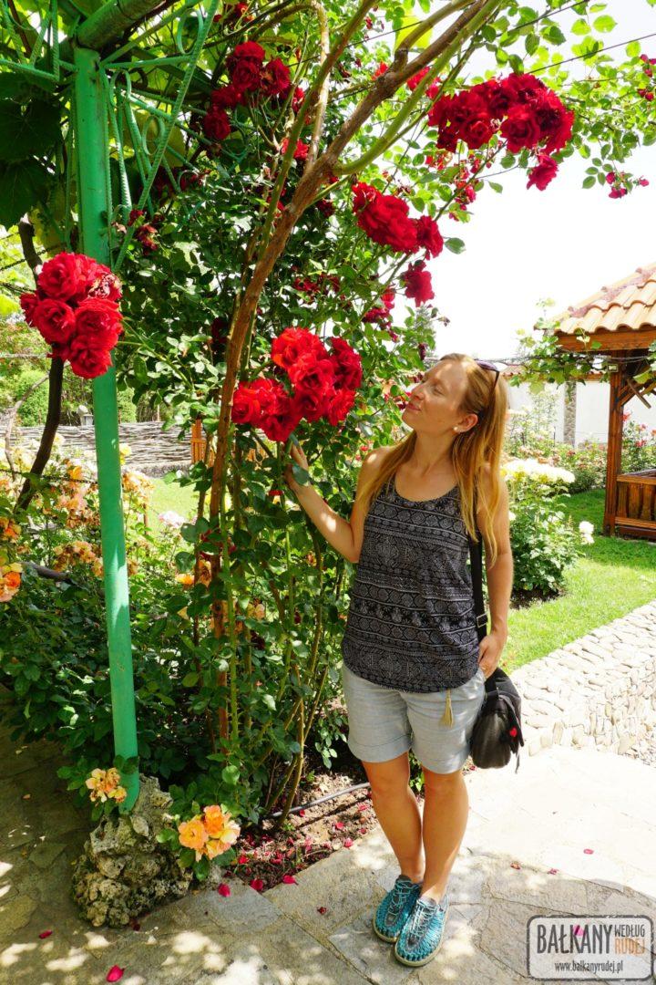 Dolina Róż