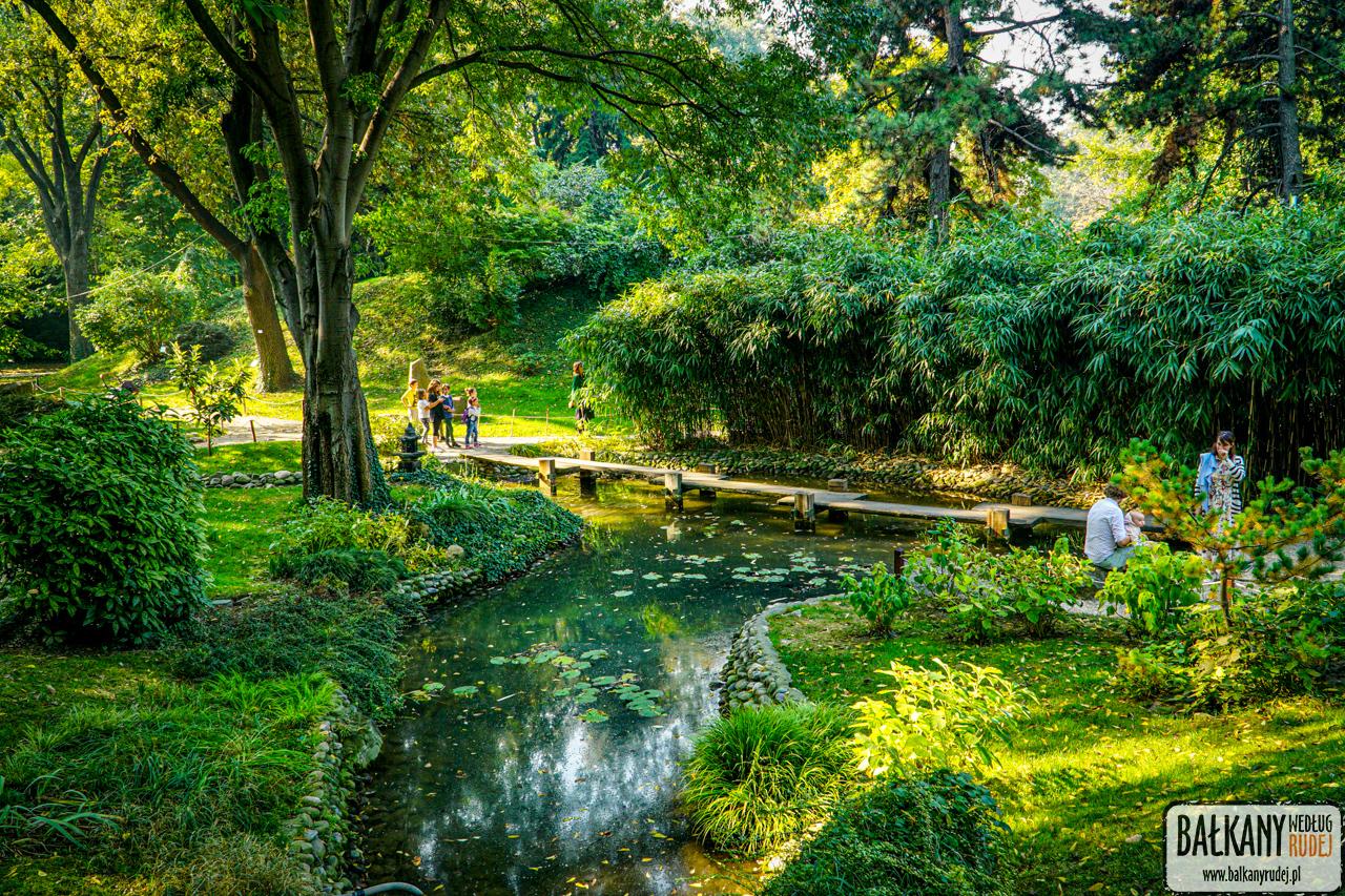 ogród botaniczny Belgrad