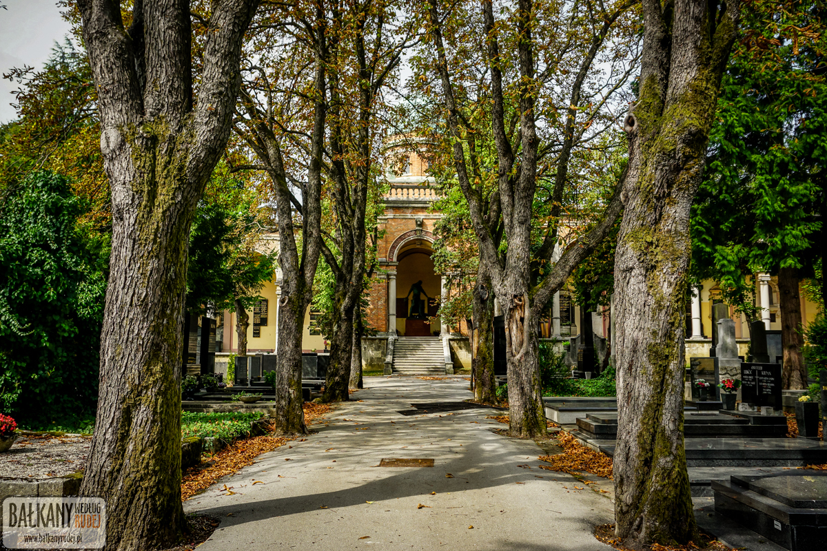 cmentarz Zagrzeb